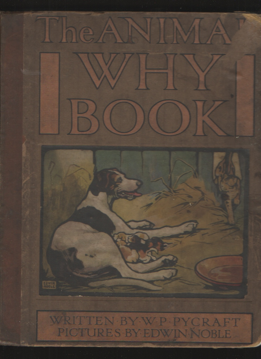 Image for THE ANIMAL WHY BOOK [COLOR PLATES]