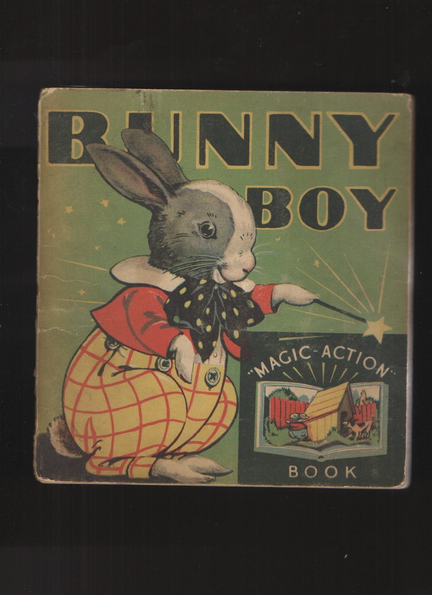 Image for Bunny Boy (Magic Action Book)