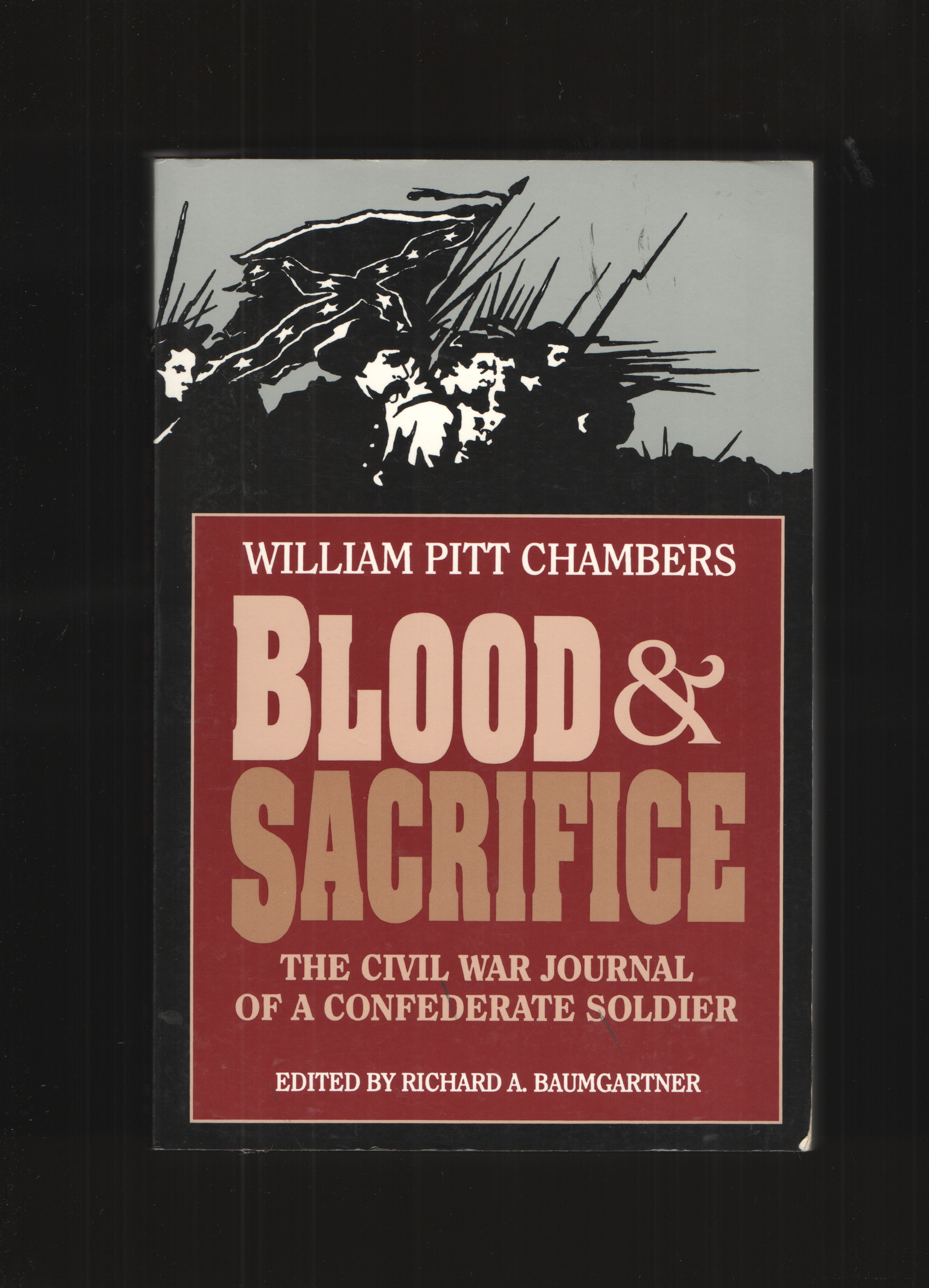 Image for Blood and Sacrifice  The Civil War Journal of a Confederate Soldier
