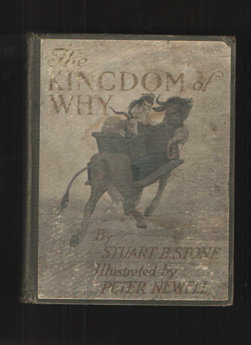 Image for The Kingdom of Why