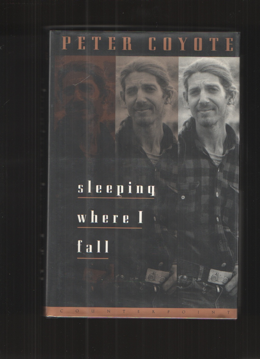 Image for Sleeping Where I Fall A Chronicle
